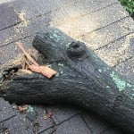 Insurance and Roof Replacement Costs