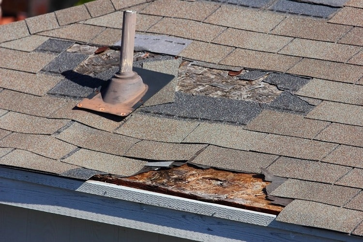 Signs That You Need Roof Repair